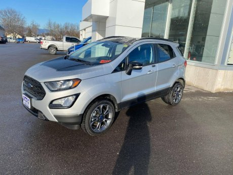 2020 Ford EcoSport - 19196 Image 1