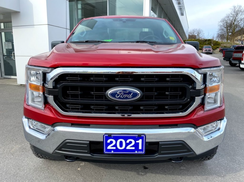 2021 Ford F-150 - 19412 Full Image 2